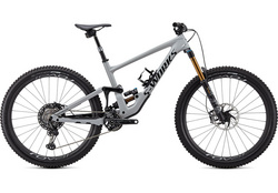2020 S-WORKS ENDURO