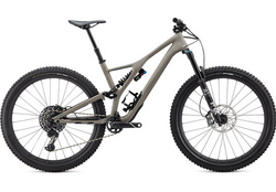 2020 STUMPJUMPER PEMBERTON LTD EDITION 29