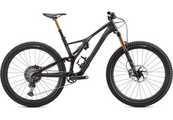 2020 S-WORKS STUMPJUMPER 29
