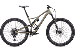 2020 STUMPJUMPER EXPERT CARBON 29